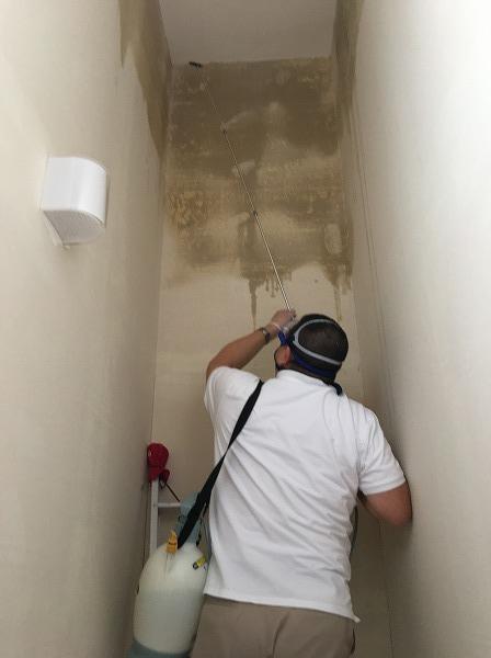 リビングルームの吹き抜け部分天井の除カビ・防カビ施工