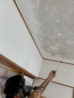 コンクリートペンキ仕上げの天井に広がったカビ、エルイズビーの除カビ・防カビ施工で安心安全な環境になり喜んでいただきました。