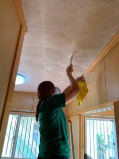 天井の石膏ボードに発生したカビの除カビ・防カビ施工を行いました。